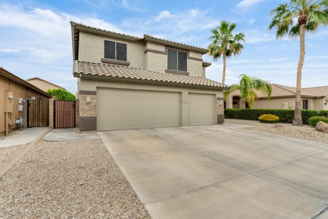 9210 W Lone Cactus Drive, Peoria, AZ 85382 (MLS #5918692) :: The Everest Team at My Home Group