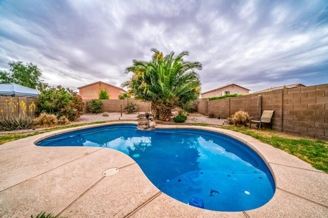 30032 N Desert Willow Boulevard, San Tan Valley, AZ 85143 (MLS #5918719) :: Arizona 1 Real Estate Team