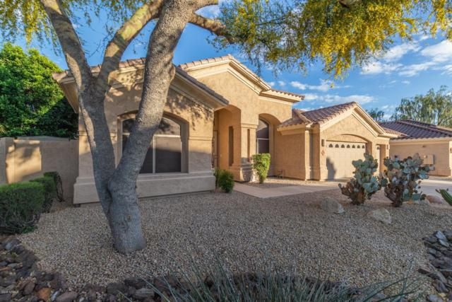 6041 E Hartford Avenue, Scottsdale, AZ 85254 (MLS #5918744) :: CC & Co. Real Estate Team