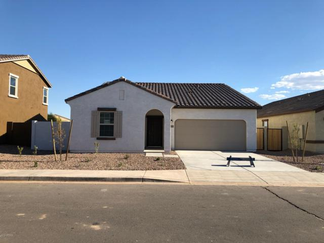 37157 W Capri Avenue, Maricopa, AZ 85138 (MLS #5918753) :: Team Wilson Real Estate