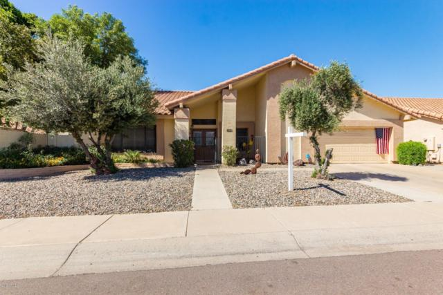 11010 W Sieno Place, Avondale, AZ 85392 (MLS #5918771) :: The Daniel Montez Real Estate Group