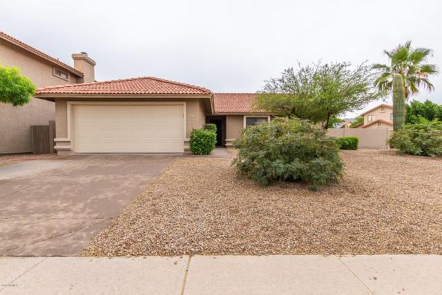 13828 S 36th Way, Phoenix, AZ 85044 (MLS #5918783) :: Keller Williams Realty Phoenix