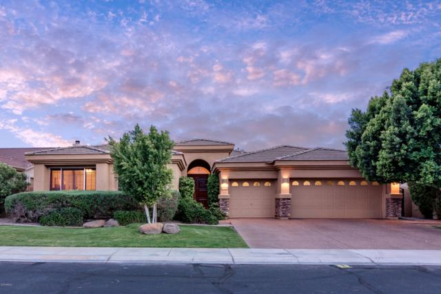 1775 W Kaibab Drive, Chandler, AZ 85248 (MLS #5918811) :: Devor Real Estate Associates