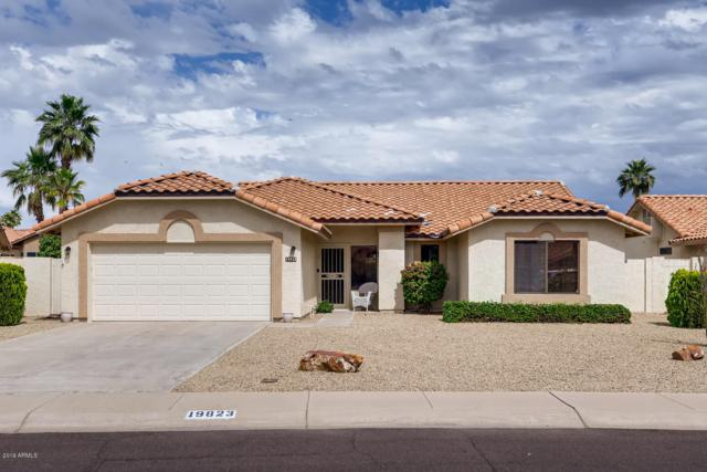 19823 N 92ND Avenue, Peoria, AZ 85382 (MLS #5918873) :: The Results Group