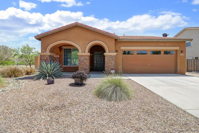 1677 S 169TH Avenue, Goodyear, AZ 85338 (MLS #5918892) :: Riddle Realty