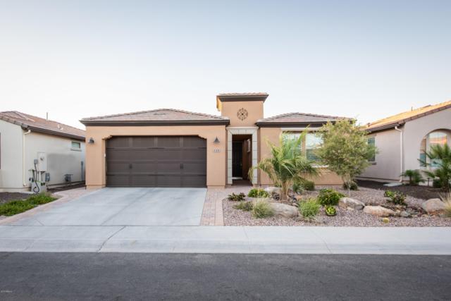 128 E Atacama Lane, San Tan Valley, AZ 85140 (MLS #5918940) :: Team Wilson Real Estate