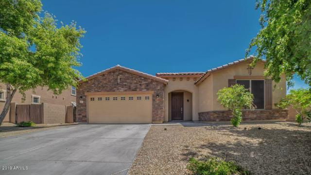 1377 S 161ST Drive, Goodyear, AZ 85338 (MLS #5918978) :: CC & Co. Real Estate Team