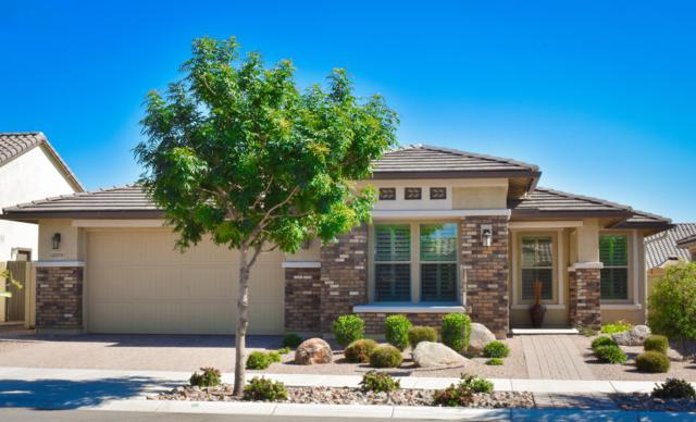 10059 E Tarragon Avenue, Mesa, AZ 85212 (MLS #5919001) :: CC & Co. Real Estate Team