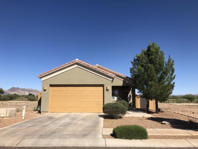 3731 Camino Del Rancho, Douglas, AZ 85607 (MLS #5919005) :: The Pete Dijkstra Team