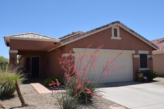 2491 E Fiesta Drive, Casa Grande, AZ 85194 (MLS #5919035) :: Team Wilson Real Estate