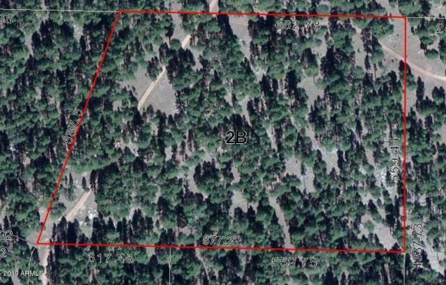 2B Coconino Forest Rd 137A, Happy Jack, AZ 86024 (MLS #5919063) :: Homehelper Consultants