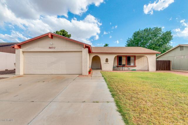 5603 W Villa Maria Drive, Glendale, AZ 85308 (MLS #5919078) :: CC & Co. Real Estate Team