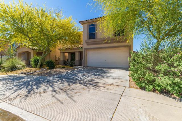2535 W Hedgehog Place, Phoenix, AZ 85085 (MLS #5919094) :: Keller Williams Realty Phoenix