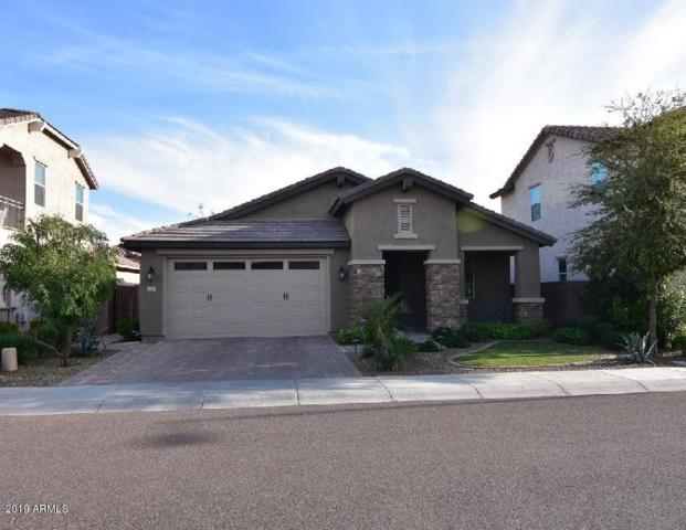 277 E Kaibab Drive, Chandler, AZ 85249 (MLS #5919148) :: Relevate   Phoenix