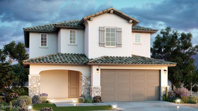 23236 N 126th Lane, Sun City West, AZ 85375 (MLS #5919212) :: Arizona 1 Real Estate Team