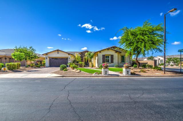 20209 E Via Del Rancho, Queen Creek, AZ 85142 (MLS #5919218) :: Devor Real Estate Associates