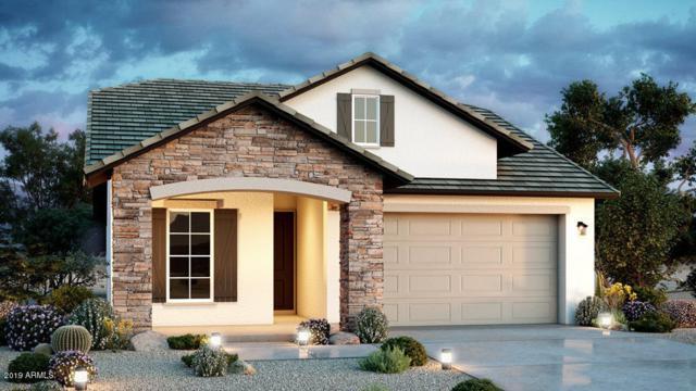 23152 N 126th Drive, Sun City West, AZ 85375 (MLS #5919233) :: Scott Gaertner Group