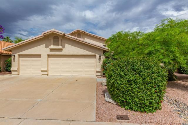 24401 N 39TH Lane, Glendale, AZ 85310 (MLS #5919260) :: Riddle Realty