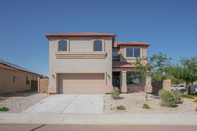 23770 W Levi Drive, Buckeye, AZ 85326 (MLS #5919265) :: Team Wilson Real Estate