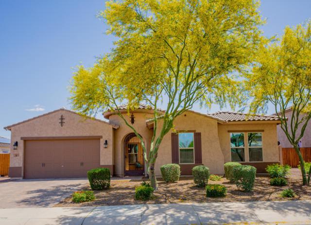 18101 W Mackenzie Drive, Goodyear, AZ 85395 (MLS #5919365) :: CC & Co. Real Estate Team