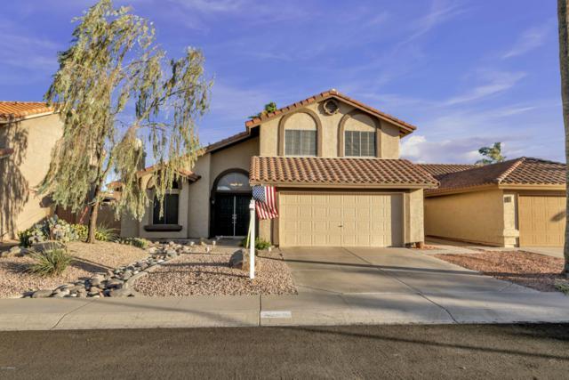 4305 E Amberwood Drive, Phoenix, AZ 85048 (MLS #5919375) :: CC & Co. Real Estate Team