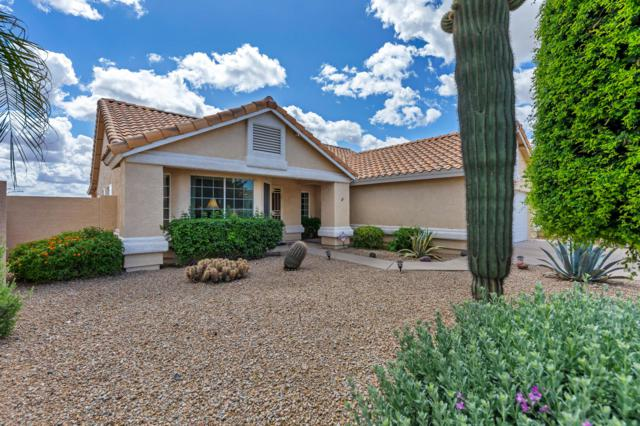 16230 E Glenpoint Drive, Fountain Hills, AZ 85268 (MLS #5919396) :: Riddle Realty