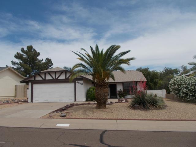 4618 E Cheyenne Drive, Phoenix, AZ 85044 (MLS #5919405) :: The Everest Team at My Home Group