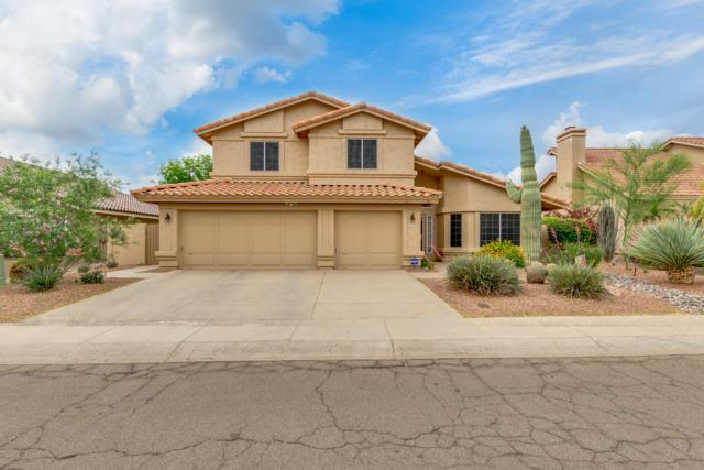 2729 E Mountain Sky Avenue, Phoenix, AZ 85048 (MLS #5919441) :: Yost Realty Group at RE/MAX Casa Grande