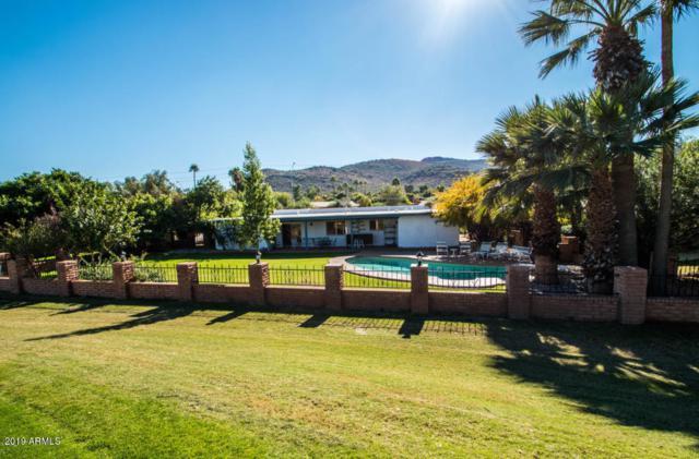 336 W Thunderbird Road, Phoenix, AZ 85023 (MLS #5919443) :: CC & Co. Real Estate Team