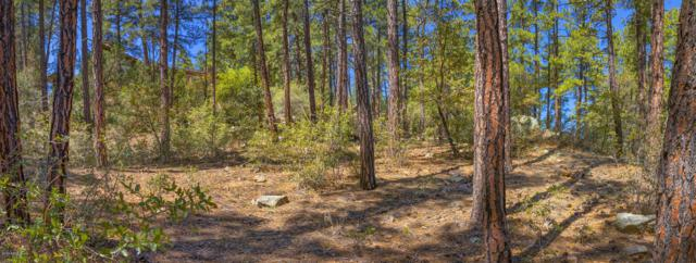 1159 W Timber Ridge Road, Prescott, AZ 86303 (MLS #5919490) :: Lifestyle Partners Team