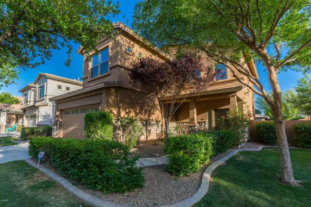 4245 E Washington Court, Gilbert, AZ 85234 (MLS #5919554) :: CC & Co. Real Estate Team