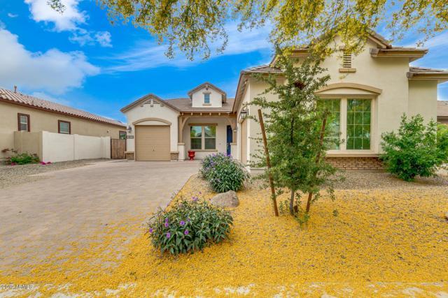 3831 E Powell Place, Chandler, AZ 85249 (MLS #5919563) :: The Daniel Montez Real Estate Group