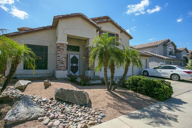1715 E Montoya Lane, Phoenix, AZ 85024 (MLS #5919590) :: The Kenny Klaus Team