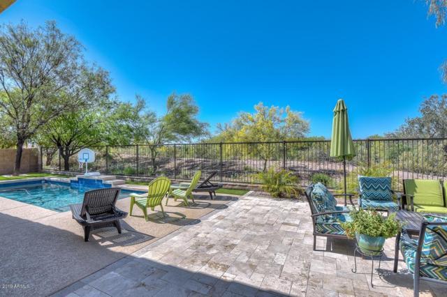 12445 W Red Hawk Drive, Peoria, AZ 85383 (MLS #5919625) :: Riddle Realty