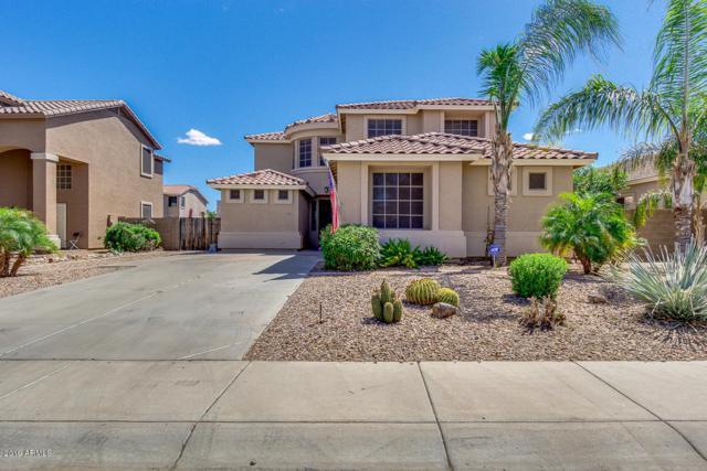 3355 W White Canyon Road, San Tan Valley, AZ 85142 (MLS #5919637) :: Riddle Realty