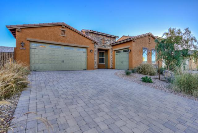 2455 E Tomahawk Drive, Gilbert, AZ 85298 (MLS #5919696) :: Devor Real Estate Associates