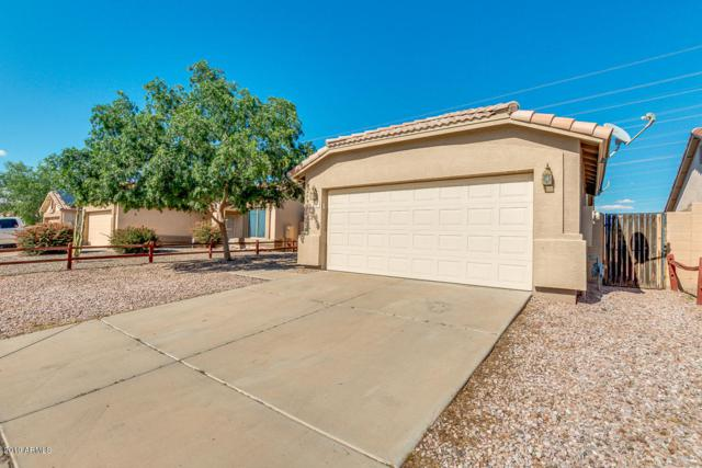 8711 N 112TH Avenue, Peoria, AZ 85345 (MLS #5919730) :: Team Wilson Real Estate
