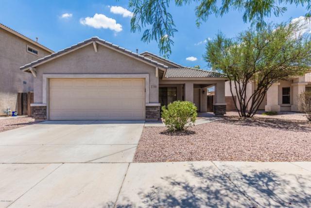 17223 W Elaine Drive, Goodyear, AZ 85338 (MLS #5919771) :: Realty Executives