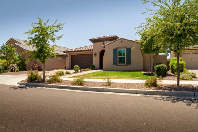 20645 W Stone Hill Road, Buckeye, AZ 85396 (MLS #5919787) :: Riddle Realty