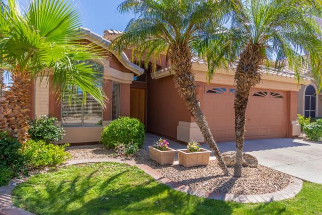 9703 E Palm Ridge Drive, Scottsdale, AZ 85260 (MLS #5919794) :: Devor Real Estate Associates