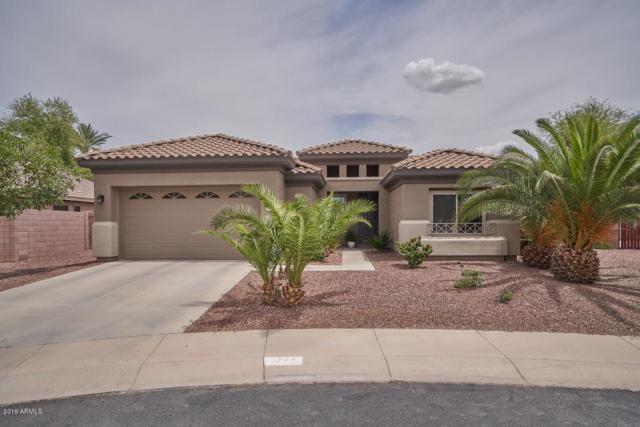 3777 S Newport Street, Chandler, AZ 85286 (MLS #5919834) :: Realty Executives