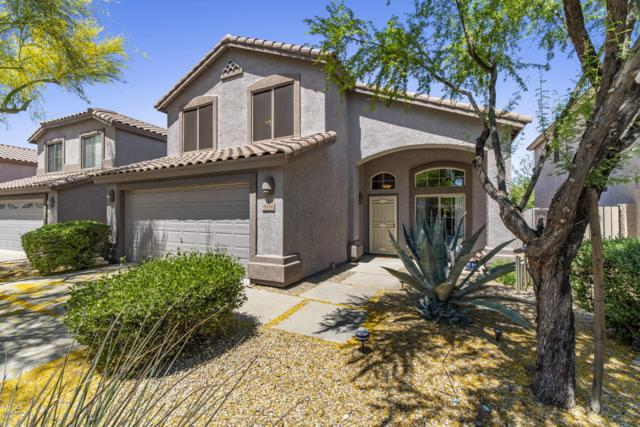 4446 E Coyote Wash Drive, Cave Creek, AZ 85331 (MLS #5919922) :: The Results Group