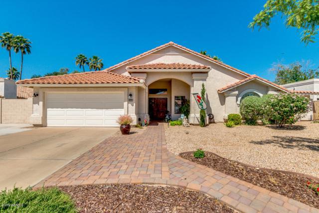 14832 N 45TH Way, Phoenix, AZ 85032 (MLS #5919953) :: The W Group