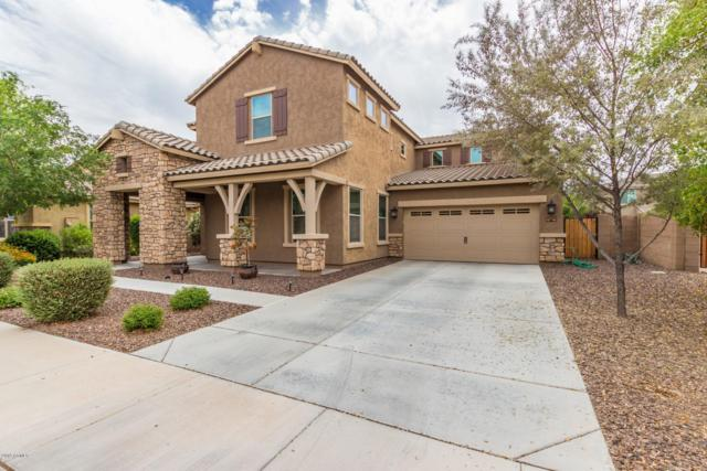 20059 E Escalante Road, Queen Creek, AZ 85142 (MLS #5919992) :: Riddle Realty