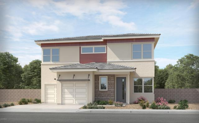 15686 W Melvin Street, Goodyear, AZ 85338 (MLS #5920006) :: CC & Co. Real Estate Team
