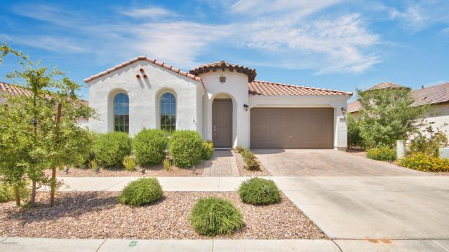 10404 E Durant Drive, Mesa, AZ 85212 (MLS #5920035) :: Team Wilson Real Estate
