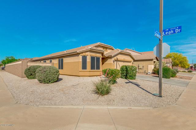 30438 W Catalina Drive, Buckeye, AZ 85396 (MLS #5920114) :: Arizona 1 Real Estate Team