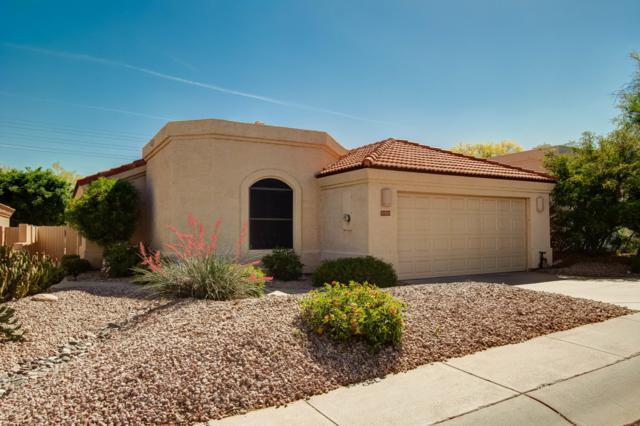 17221 E Teal Drive, Fountain Hills, AZ 85268 (MLS #5920123) :: Keller Williams Realty Phoenix
