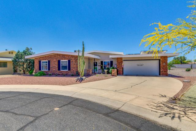 10629 W Cimarron Court, Sun City, AZ 85373 (MLS #5920154) :: Devor Real Estate Associates