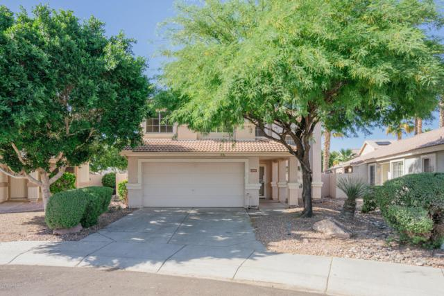13156 W Windsor Avenue, Goodyear, AZ 85395 (MLS #5920162) :: CC & Co. Real Estate Team